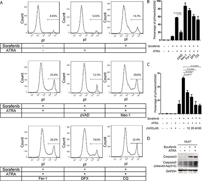Cell death induced by the combination of sorafenib and ATRA is blocked by the caspase inhibitor zVAD in Huh7 cells.