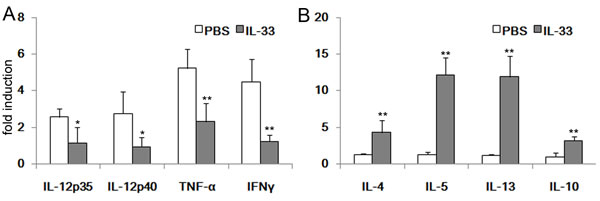 RT-PCR analysis of cytokines mRNA in the colonic tissues.