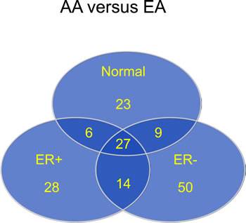 Most differentially methylated CpG loci by race (AA versus EA) in normal and tumor tissue, and by ER status