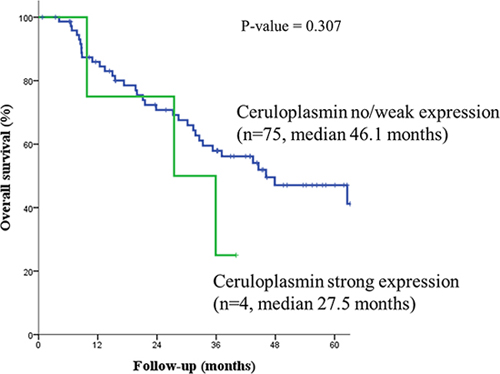 Patients with strong ceruloplasmin expression had shorter median overall survival than those with no or weak overexpression.