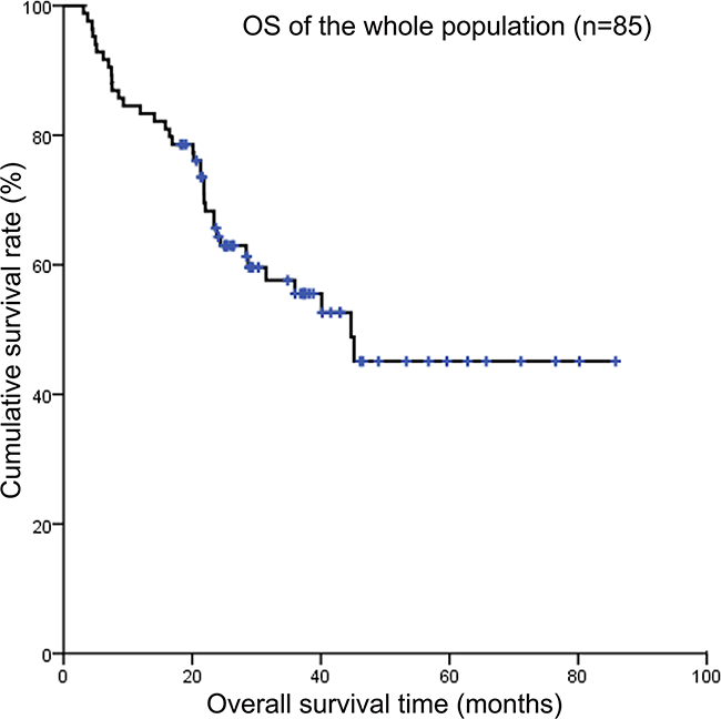 Kaplan-Meier survival curves showing overall survival of the whole population.