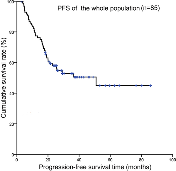 Kaplan-Meier survival curves showing progression-free survival of the whole population.