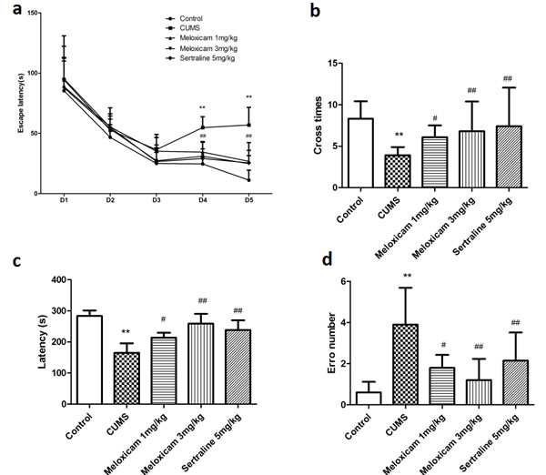 The effects of meloxicam treatment on learning and memory of CUMS-treated rats based on the MWM task and the step-down-type passive avoidance test.