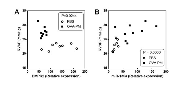 Correlation between BMPR2 expression and RVSP, and correlation between miR-135a expression and RVSP.