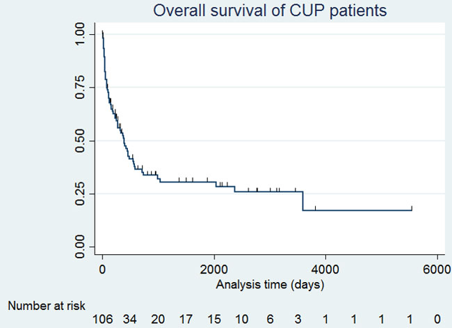 A Kaplan-Meier graph of overall survival of all patients.