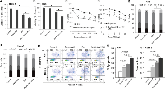 Bapta-AM markedly enhances dexamethasone-induced cell death, cell cycle disruption and apoptosis in ALL cell lines.