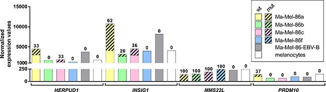 mRNA expression levels of the genes harboring immunogenic mutations.