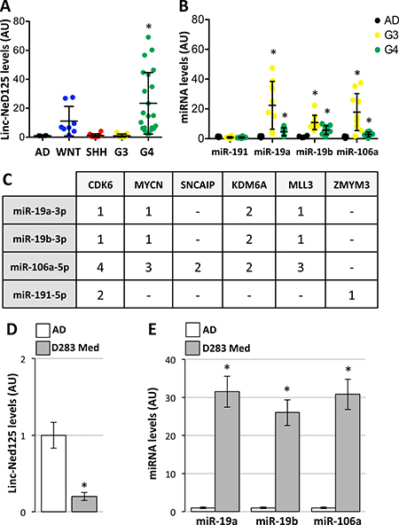 Expression of linc-NeD125 and interacting miRNAs in primary MBs and D283 Med cells.