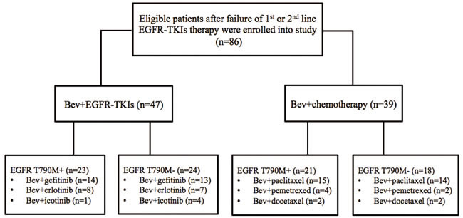 The flowchart of eligible patients enrolled into this study.