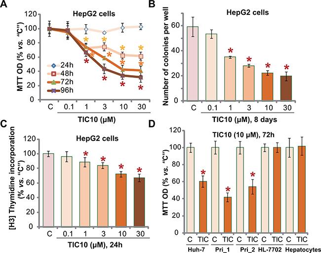 TIC10 inhibits HCC cell proliferation in vitro.