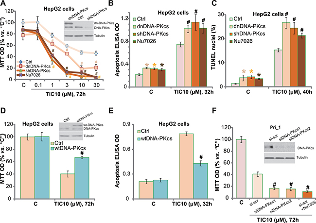 DNA-PKcs could be a primary resistance factor of TIC10 in HCC cells.