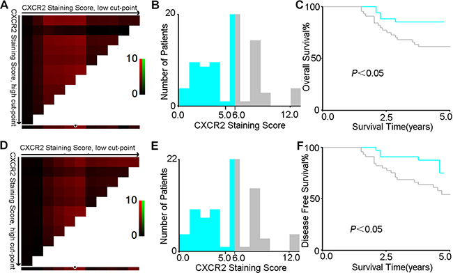 X-tile analysis of survival data in CRC patients reveals a continuous distribution based on CXCR2 staining score.