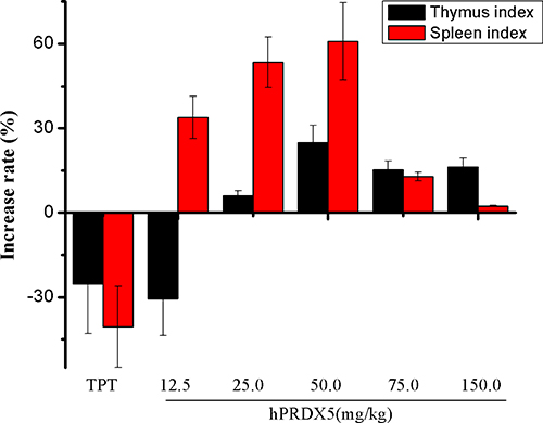 Effects of hPRDX5 on spleen and thymus indices in C26-injected mice.