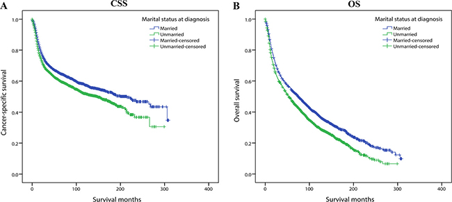 Kaplan-Meier survival curves of 1:1 matched group: cancer-specific survival and overall survival in 6208 OCSCC patients.