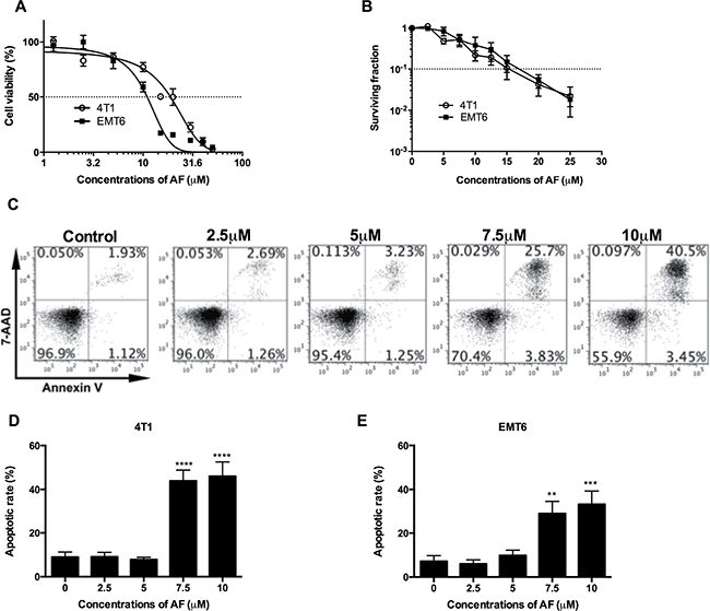 AF caused apoptosis and cytotoxicity in mouse tumor cells.