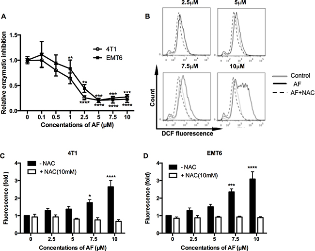 AF inhibited TrxR and triggered ROS overproduction in tumor cells.