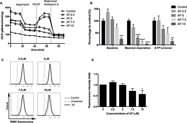AF induced mitochondrial dysfunction in tumor cells.