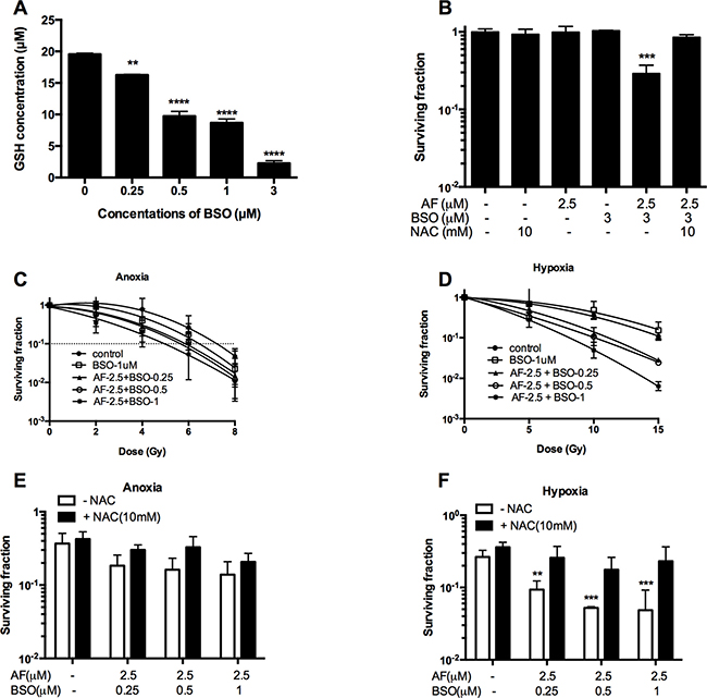 BSO potentiated AF-induced radiosensitization in tumor cells.