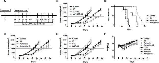 AF combined with BSO enhanced the radioresponse of 4T1 tumor in Balb/c mice.