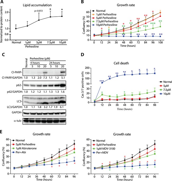 Lipid degradation inhibitor perhexiline activates cell death in prostate cancer cells.
