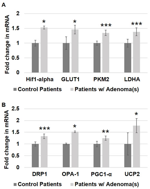Metabolic and mitochondrial changes in patient rectal biopsies from uninvolved mucosa.