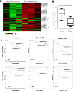 Fig 1: Expression of miR-17 is associated with chemoresistance in colorectal cancer.