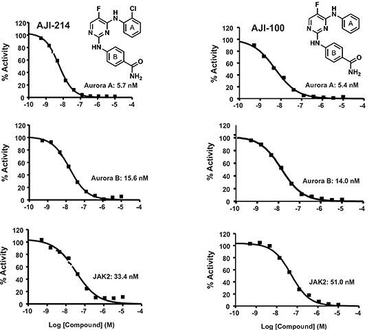 Figure 4. AJI-214 and AJI-100 are dual Aurora A/B and JAK2 inhibitors.