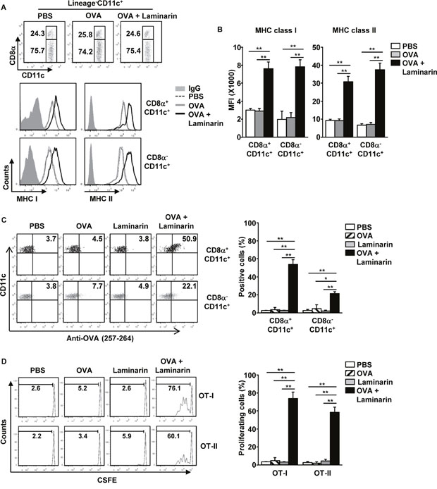 Laminarin-induced, Ag-specific immune responses.