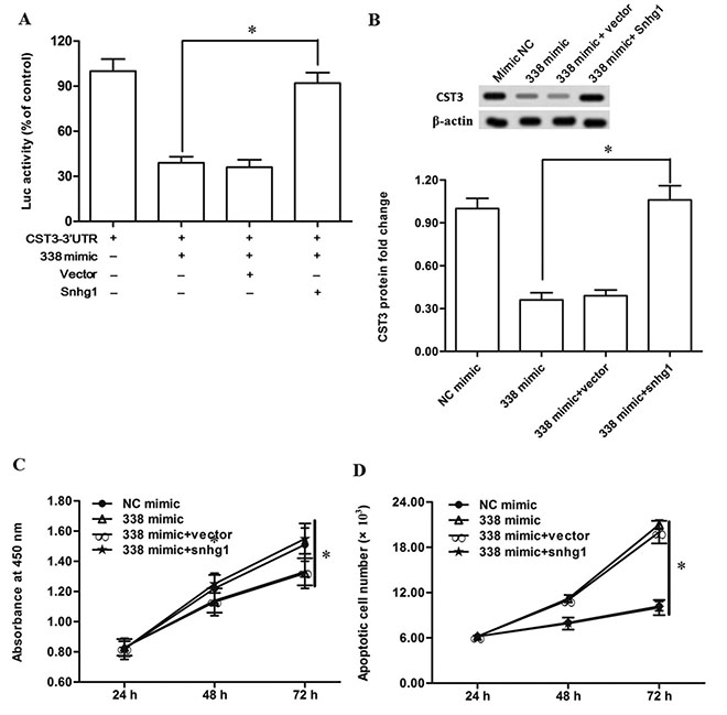 LncRNA-Snhg1 rescued the suppression of esophageal cancer cell growth and CST3 expression caused by miR-338.