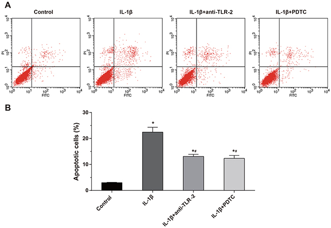 Comparisons of apoptosis of chondrocytes by Annexin V/PI method among four groups.