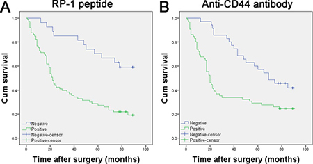 Kaplan–Meier curves for survival of gastric adenocarcinoma patients.