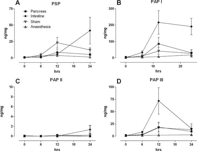Intestinal levels of PSP, PAPI ,II, III in response to a pancreatic ductal lesion (Pancreas), intestinal lesion (Intestine), laparotomy (Sham), or anaesthesia control (Anaesthesia).