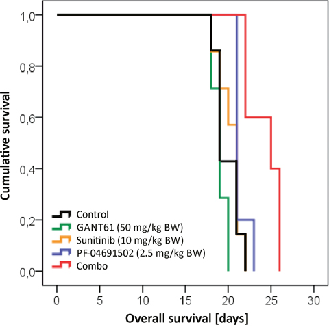 Prolonged survival in a mouse model upon combined inhibition of GLI, FLT3 and PI3K.