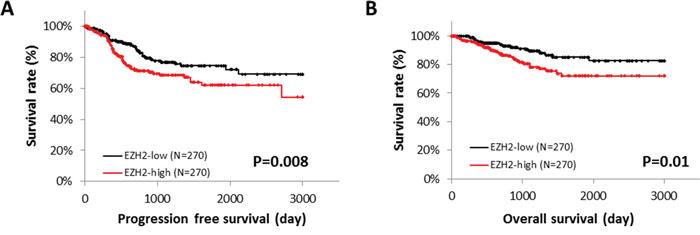 EZH2 expression and patient survival.