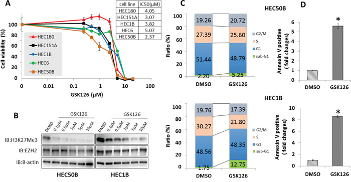 Effect of GSK126 on endometrial cancer cell lines.