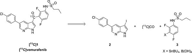 Scheme 1: Retrosynthetic analysis of [11C]vemurafenib via palladium catalyzed carbonylative cross coupling reactions.