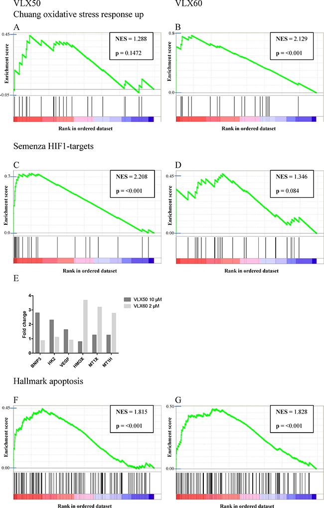 Gene set enrichment analysis.