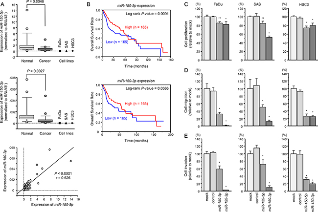 Expression levels of miR-150-5p and miR-150-3p in HNSCC clinical specimens and functional significance of miR-150-5p and miR-150-3p in HNSCC cells.
