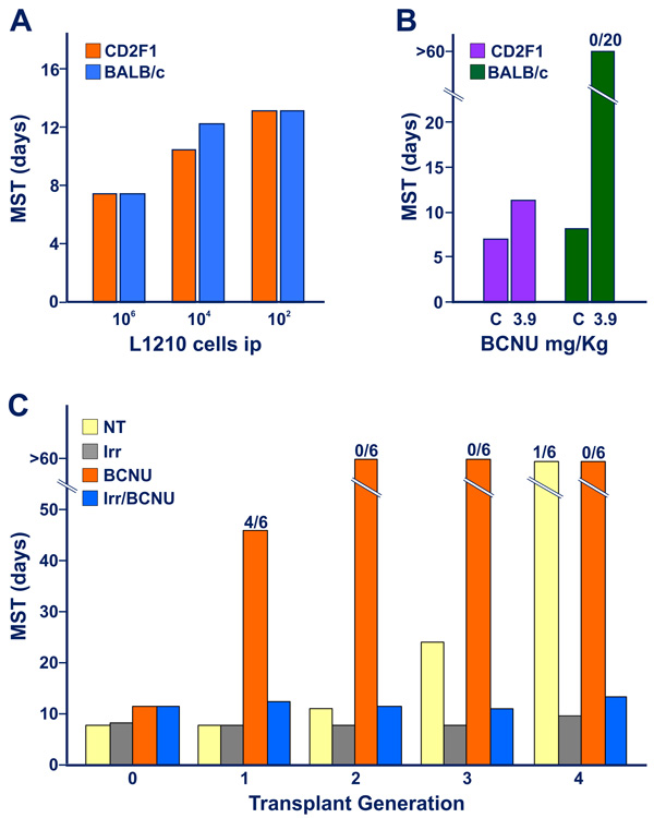 Appearance of limited degree of immunogenicity in L5178Y DBA/2 leukemia cells exposed to early transplant generations of DTIC treatment, revealed by immuno-chemotherapy synergism.