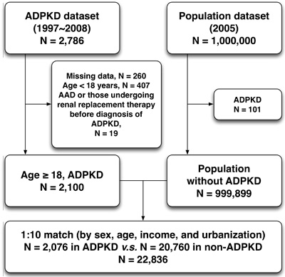 Flowchart of the patient enrollment for the ADPKD group and the matched non-ADPKD group.