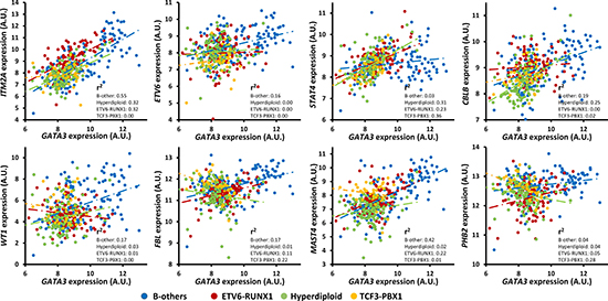 Expression association status of GATA3 with some of the important candidates in different subtypes of B-ALL (i.e., B-others, ETV6-RUNX1, Hyperdiploid, and TCF3-PBX1) in the largest available pediatric B-ALL cohort (i.e., GSE33315) with the P values listed in Table 1 and Supplementary Table 3.