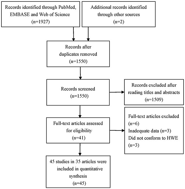 Flow diagram of the selection process of included studies in this meta-analysis.
