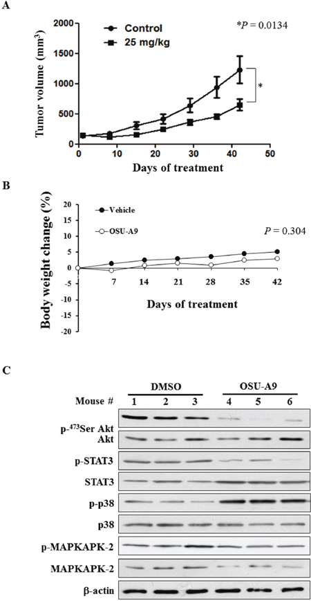 In vivo efficacy of OSU-A9 in BxPC-3 xenografted mice.