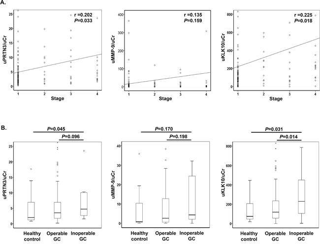 Urinary levels of proteinase 3, matrix metalloproteinase 9 and kallikrein-10.