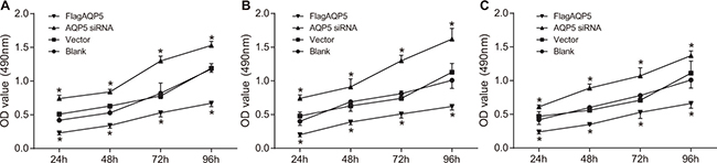 Effect of AQP5 gene silencing on the proliferation of U87-MG, U251 and LN229 at four time points.