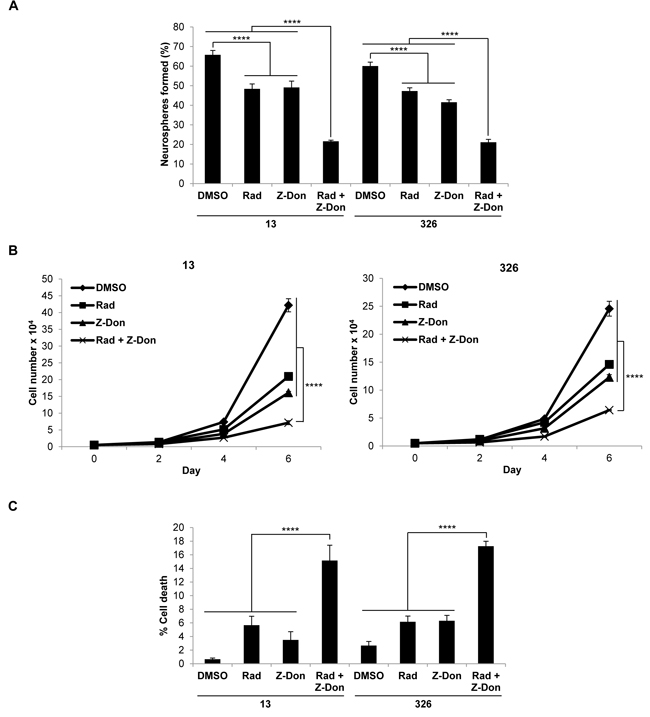Combination therapy including the tTG inhibitor Z-Don and radiation inhibits MES GSC self-renewal and proliferation, and induces cell death.