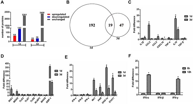 Quantitative proteome and gene expression analysis of H5N1 infected guinea pig lungs.
