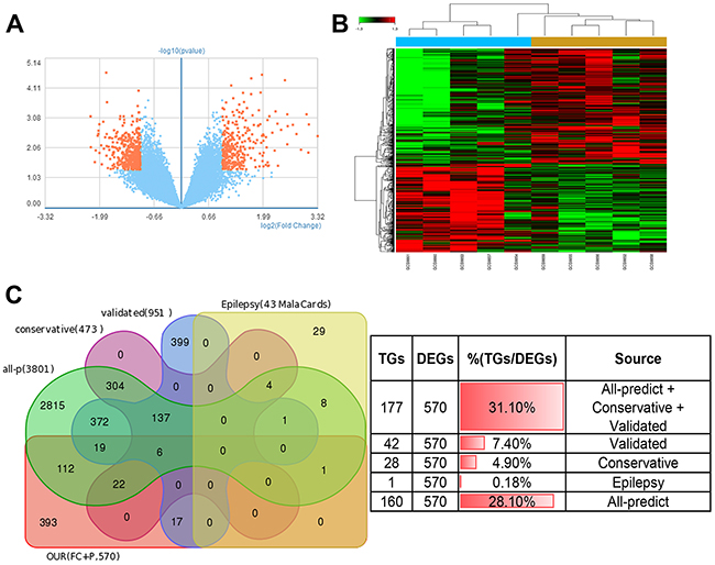 miR-132/212 may be the core molecular underlying tumor-induced epileptogenesis.