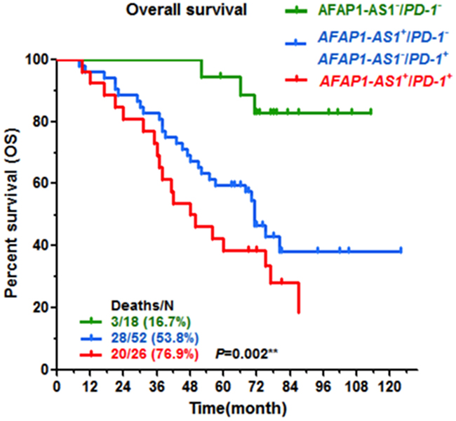 Co-expression of AFAP1-AS1 and PD-1 predicts the poorest outcomes.