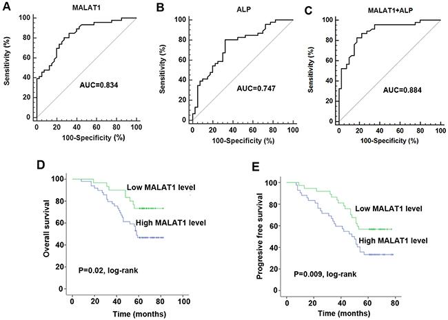 The investigation of diagnostic and prognostic value of MALAT1 in osteosarcoma.
